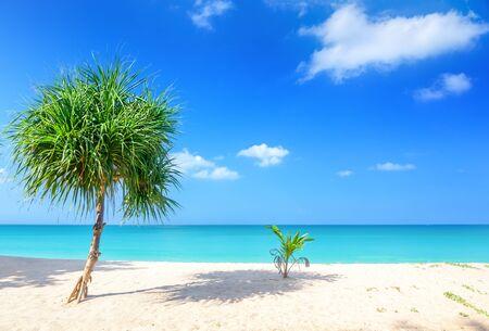 Photo pour Beach and tropical sea in Thailand - image libre de droit