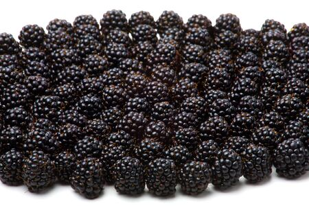 a lot of blackberries isolated on white