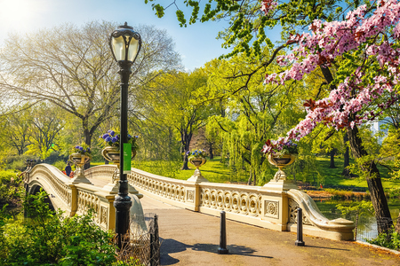 Foto de Bow bridge in Central park at spring sunny day, New York City - Imagen libre de derechos