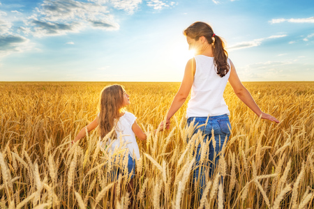 Foto de Young woman and her daughter walking on golden wheat field at sunny summer day. - Imagen libre de derechos