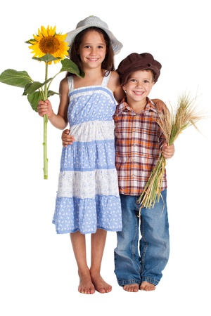 Two rural with sunflower a sheaf of wheat, isolated on white
