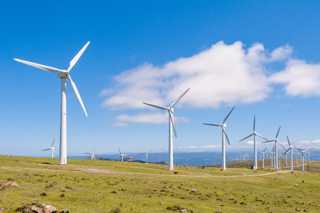 Photo for Wind turbines in the mountains. Renewable Energy. Galicia, Spain. - Royalty Free Image