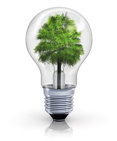 Creative ecological, environmental nature protection and power energy saving concept: green tree inside incandescent lightbulb isolated on white background with reflection effect