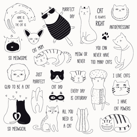 Illustration for Set of cute funny black and white doodles of different cats and quotes. Isolated objects. Hand drawn vector illustration. Line drawing. Design concept for poster, t-shirt, fashion print. - Royalty Free Image