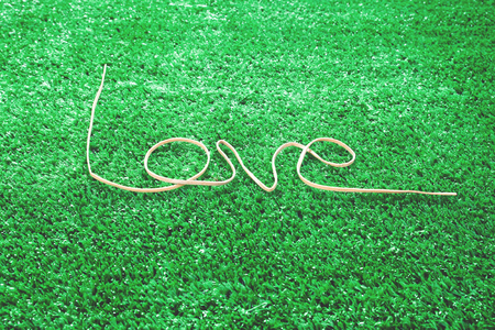 Caption word love on grasses. Love inscription from rope. Love and Valentine concept