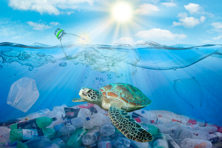 Photo pour Plastic pollution in ocean environmental problem. Turtles can eat plastic bags mistaking them for jellyfish - image libre de droit