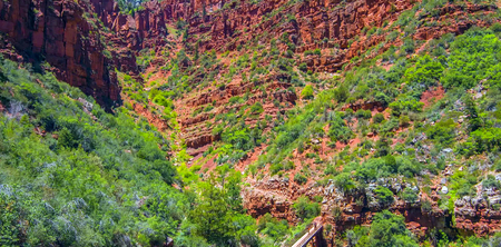 North Kaibab Trail in Grand Canyon National Park, Arizona, United States of America.