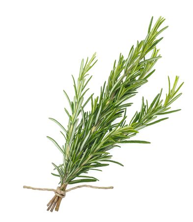Photo for rosemary bunch tied  isolated on white background - Royalty Free Image