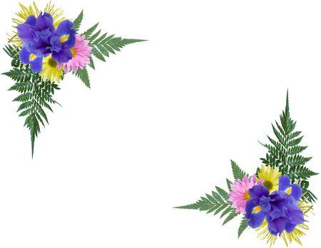 Floral photo corners.