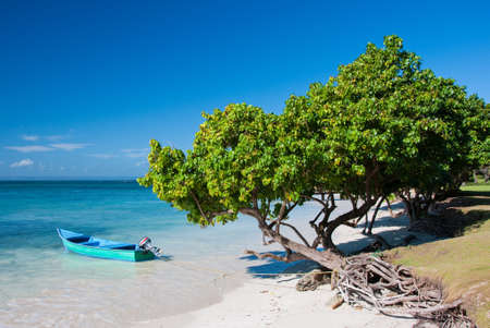 Nice Caribbean Beach, Dominican Republic