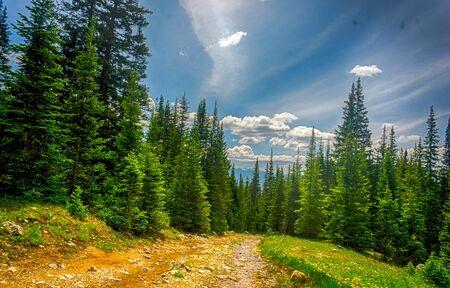 Photo pour Rocky Mountain Vista - Lanscape - image libre de droit