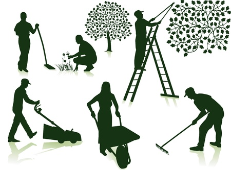Illustration for garden care  - Royalty Free Image