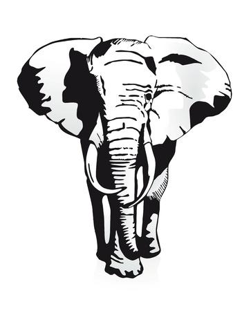Ilustración de elephant - Imagen libre de derechos