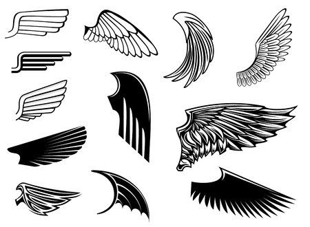 Set of bird wings for heraldry design