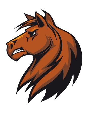 Brown stallion head for mascot or equestrian sports design