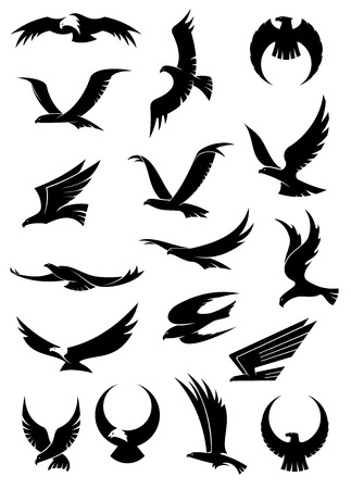 Flying eagle, falcon and hawk icons showing different wing positions in black silhouette, some with white heads for heraldic or tattoo design