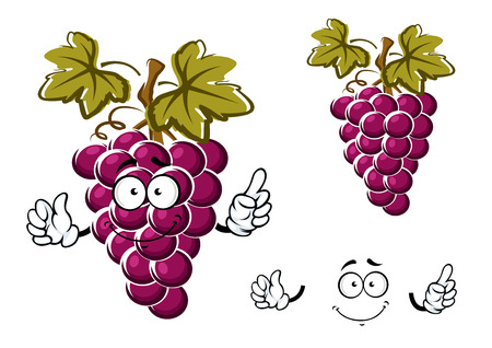 Ripe purple grape fruit cartoon character with round juicy berries, curly tendril and dark green leaves for fresh food or agriculture design