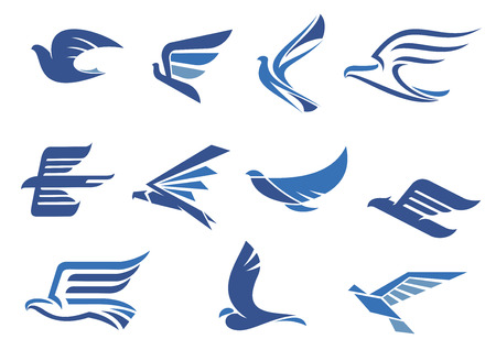 Flying blue birds as eagle, hawk, falcon and dove in flight. For business, delivery, transportation or travel design
