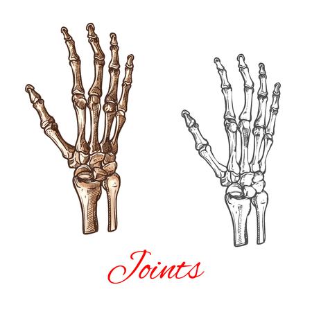 Ilustración de Vector sketch icon of human hand bones or joints - Imagen libre de derechos