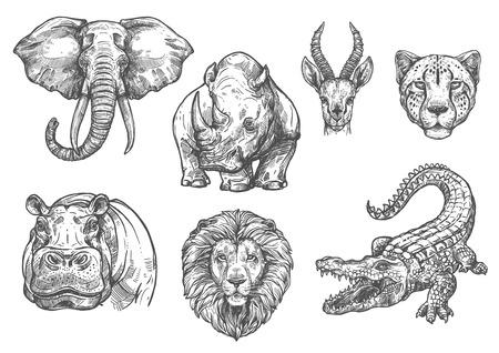 Ilustración de Vector sketch zoo wild African animals icons - Imagen libre de derechos