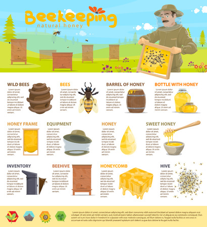 Honey beekeeping vector infographics