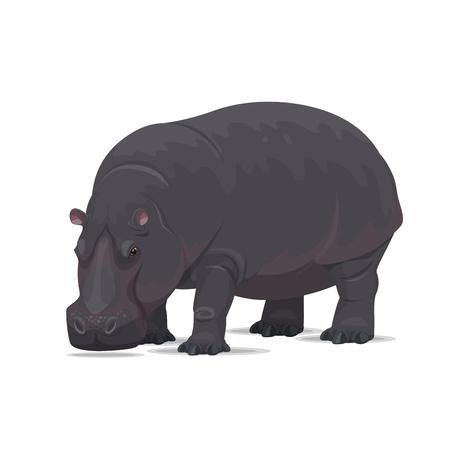 Ilustración de Hippopotamus vector African animal flat icon - Imagen libre de derechos