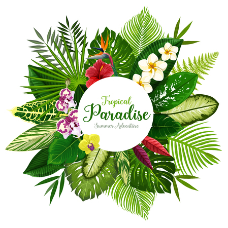 Illustration pour Summer holidays banner of tropical palm leaf and hawaiian flower. Exotic floral bouquet of hibiscus, plumeria, orchid and strelitzia flower, fern, monstera, fan and areca palm for invitation design - image libre de droit