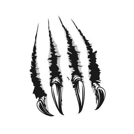 Illustration for Scratch claws of animals realistic sketch. Hole in sheet of paper with torn edges. Monster claws scratching wall isolated on white. Beast claw breaking through ripping and tearing, vector - Royalty Free Image