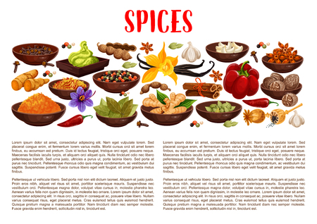 Illustration pour Spices banner with aroma food condiments and spicy seasoning border. Pepper, chili and ginger, cinnamon, vanilla and star anise, nutmeg, cardamom and bay leaf, garlic, saffron, turmeric and wasabi - image libre de droit