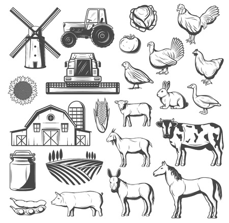 Illustration pour Farming, agriculture and cattle icons. Vector tractor, windmill or grain barn and arable field, farm animals cow and horse, pig and chicken, turkey, duck and goose, tomato and potato veggies - image libre de droit