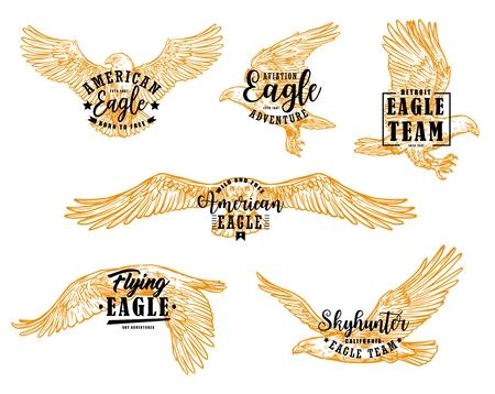 Ilustración de Eagle bird sketches with letterings. Vector hawk, falcon or american eagle spread wings, flying birds of prey heraldic emblems and mascots design - Imagen libre de derechos