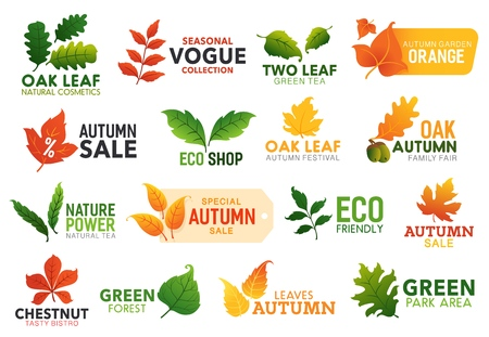 Illustration pour Leaf icons, business or nature and autumn sale promo. Vector green oak, maple and chestnut leaves, eco friendly park, bistro food and natural cosmetics or fall garden festival leaf sign - image libre de droit