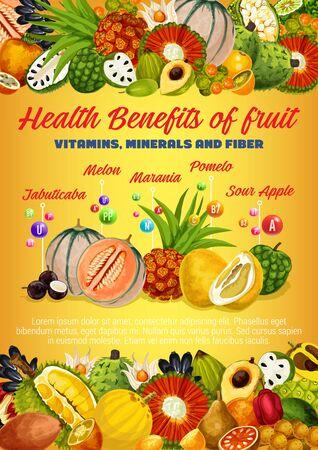 Vitamins, minerals and fiber of exotic fruits and berries vector design. Health benefits of tropical durian, pomelo and melon, kumquat, pandan and physalis, cherimoya, longkong, pu hala and marang