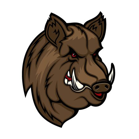 Illustration pour Wild boar, pig or hog mascot with head of forest animal. Vector icon of angry swine with evil grin, sharp tusks and brown fur. Hunting club and sport team symbol design - image libre de droit