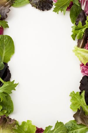 Fresh salad leaves creating a decorative border