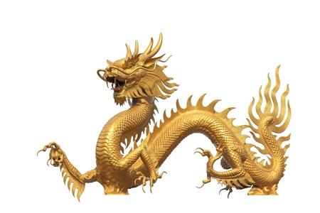 Golden dragon statue on white bachground