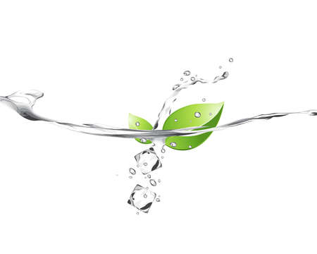 Illustration of green leaves in water