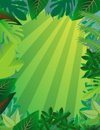 tropical forest backgroundのイラスト素材