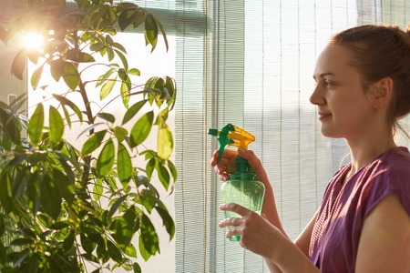 Photo pour Sideways shot of female florist takes care of plant at home, sprays it with water, uses special sprayer, takes care of flowers, likes nature. Busy young housewife cares about home plant indoor - image libre de droit