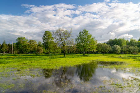 Photo pour beautiful spring landscape with reflection in the water. High quality photo - image libre de droit