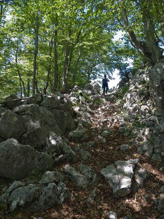 Camino a la cima del Aratz entre ayas