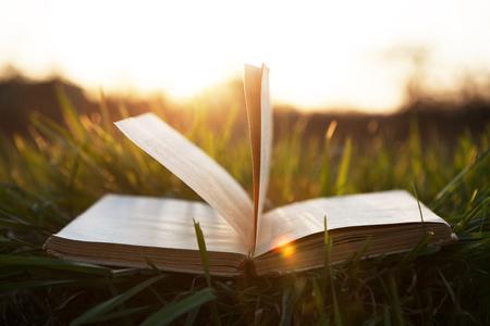 Photo pour book on grass under the sun - image libre de droit