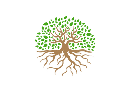Illustration for Circle Tree with Roots vector Illustration. Garden concept icon - Royalty Free Image