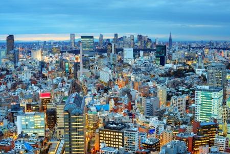 Tokyo Skyline Mural Wallpaper