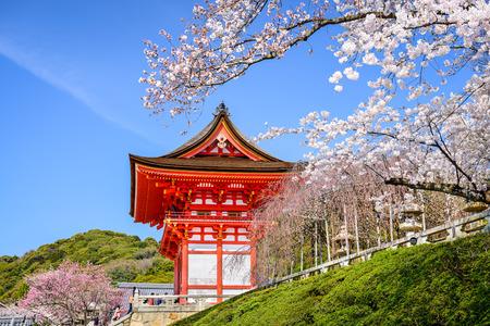 Kyoto, Japan at Kiyomizu-dera Temple in the spring.
