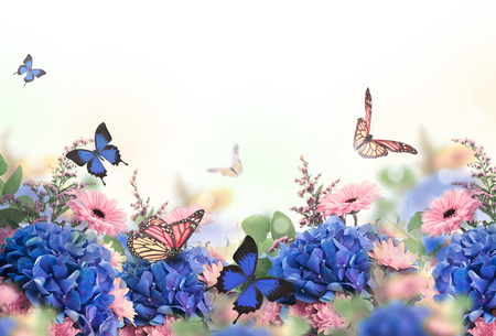 Foto de Amazing background with hydrangeas and daisies. Yellow and blue flowers on a white blank. Floral card nature. bokeh butterflies. - Imagen libre de derechos