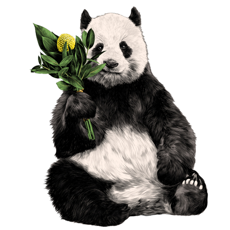 Ilustración de the Panda sits with a bouquet in his paw sketch vector graphics color picture - Imagen libre de derechos