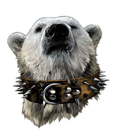 Illustration pour the head of a proud bear looking confidently forward in a leather collar with metal spikes and an earring in the nose, sketch vector graphics color illustration on a white background - image libre de droit