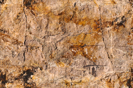 Rock surface. Great for background and texture