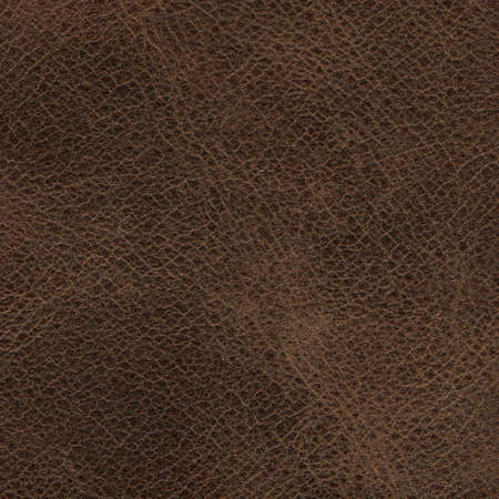 Photo pour Genuine cowhide texture close up, useful as background for any design work - image libre de droit